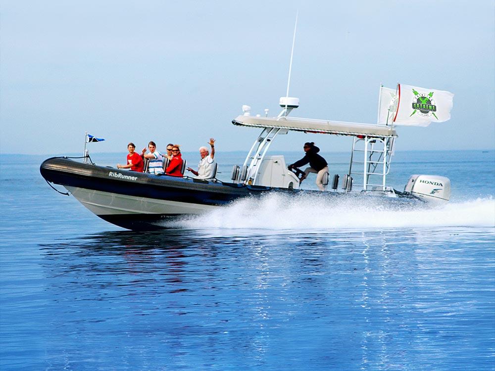 iexspeedboat1